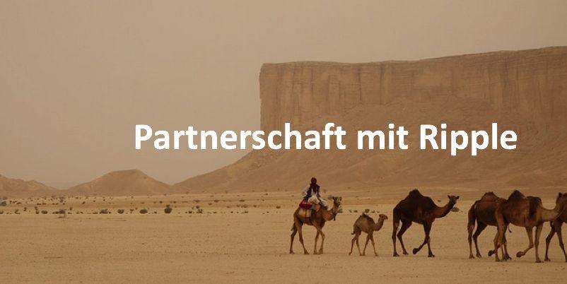Kamelkarawane in Saudi Arabien